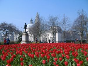 cardiff-tulips and city hall-2007