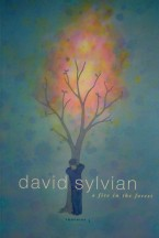 sylv-fire-2003