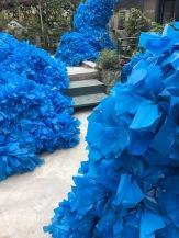img_2855-hn-blue-thing3