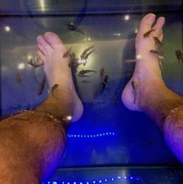 ath-dr fish feet