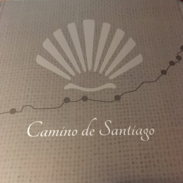pamplona-camino book