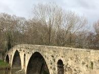 pamplona-camino magdalena bridge